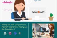 Perempuan Jadi programmer? Apakah Programmer Perempuan Bisa Diandalkan?