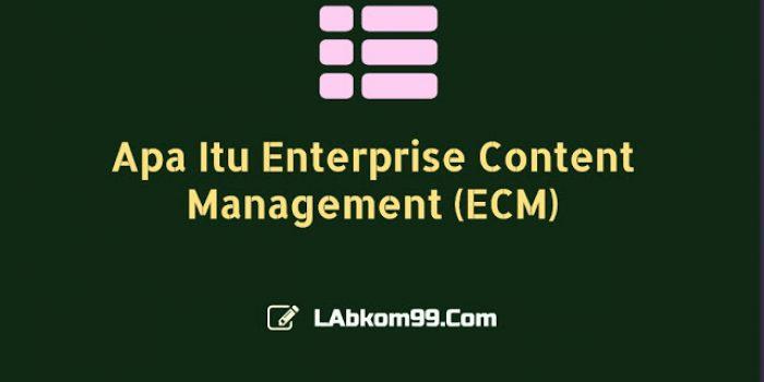 Apa Itu Enterprise Content Management (ECM)