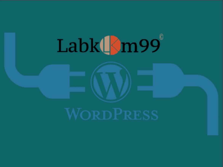 Memilih Plugin WordPress Gratis